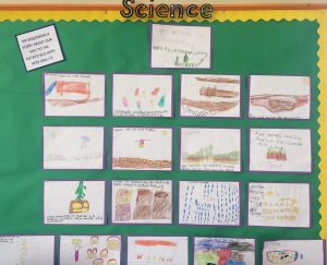 We went on the Potato Bus and sequenced a story all about it with Miss Gall!
